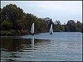 Calm water. Near Shepperton Lock, Thames. - panoramio.jpg