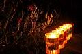 Candles (3137170511).jpg