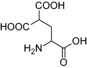 Carboxyglutamic acid.png