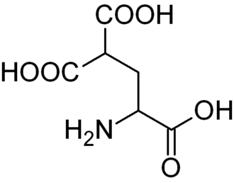 Carboxyglutamic acid - Image: Carboxyglutamic acid
