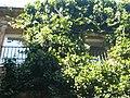 Casa de la Misericòrdia P1370994.jpg