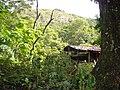 Casa de palo, madera y calamina 2 - panoramio.jpg