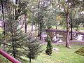 Castle Bran, Brashov, Romania (2).JPG