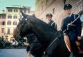 Cavalli Firenze Polizia.png