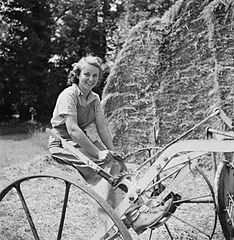 Cecil Beaton Photographs- Women's Horticultural College, Waterperry House, Oxfordshire, 1943 DB253.jpg