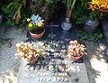 Cemetery Poznan Szczawnicka (Zygmunt Ziembinski tomb).jpg