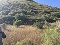 Cerro en camino a Incallajta.jpg