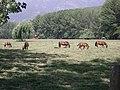 Chancón. - panoramio - R.A.T.P. (49).jpg