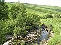 Chanlock Burn - geograph.org.uk - 464556.jpg