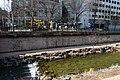 Cheong-gye-cheon, Seoul (3) (39321912550).jpg