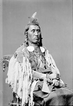 Pretty Eagle - Chief Pretty Eagle, 1880.