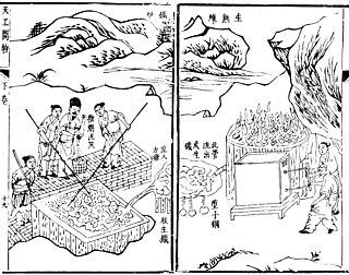 Song Yingxing Chinese scholar
