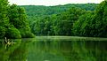 City-lake-putnam-tn1.jpg