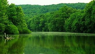 Falling Water River - City Lake