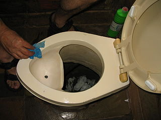 Cleaning a urine-diverting dry toilet (UDDT) in Johannesburg (2947142348).jpg