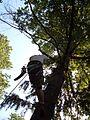 Climber 2.JPG