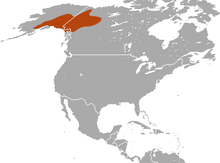 Collared Pika area.png