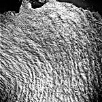 Columbia Glacier, Calving Terminus, September 15, 1975 (GLACIERS 1266).jpg