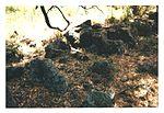 Complex Stone Arrangement - Stony Peninsula 001.jpg