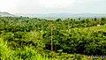 Comunidad EL PROGRESO, vista hacia el nor-oeste a las comunidades EL NARANJAL, en la Área Indigena de SUCATPIN, llano sur, Puerto Cabezas. - panoramio.jpg