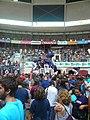 Concurs de Castells 2010 P1310333.JPG