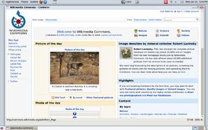 Conkeror - Image: Conkeror web browser