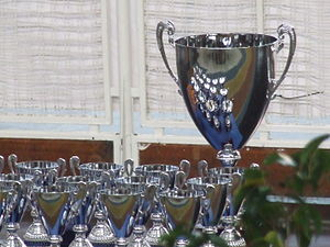 Copa del Rey de Hockey Patines - Trophy given to the winners.