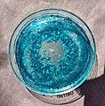 Copper (II) Acetate Crystals in a Petri Dish.jpg