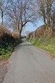 Country lane near Scethrog - geograph.org.uk - 383720.jpg