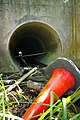 Culvert Under the M25 - geograph.org.uk - 538624.jpg
