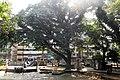 DC Hill, Chittagong (07).jpg