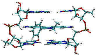 Intercalation (biochemistry) - Ethidium intercalated between two adenine-thymine base pairs.