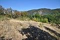 Dacian Fortress of Capalna 010.jpg
