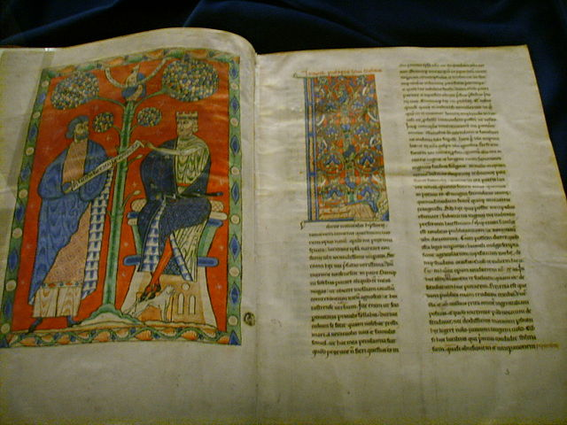 Страница из рукописи «Естественной истории» XIII века