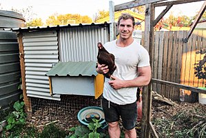 David Pocock - Image: David Pocock with chicken