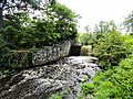 Davidson Mill Pond Park, South Brunswick, New Jersey USA July 15th, 2013 - panoramio (6).jpg
