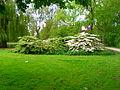 Delft park 2.JPG