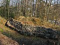Dietikon - Glanzenberg Burg IMG 5918.JPG
