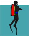 Diver with large wing at surface.png