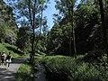 Divoká Šárka - panoramio (36).jpg