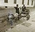 Donkey, cart Fortepan 92196.jpg