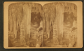 Double column, Caverns of Luray, by C. H. James.png