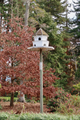 Dovecote in Isel Park.png