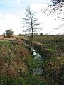 Drainage ditch separating two fields - geograph.org.uk - 1061464.jpg