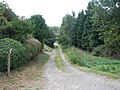 Driveway to Mill Farm - geograph.org.uk - 1465259.jpg