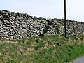 Dry Stone Wall near Cefn-Brith - geograph.org.uk - 424031.jpg