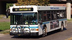 Duluth Transit Authority 265 closeup.jpg