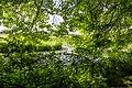 Dutch landscape (14427255641).jpg