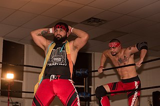Santana and Ortiz Professional wrestling tag team