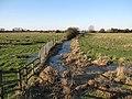 Edge of Moor Farm - geograph.org.uk - 1652057.jpg
